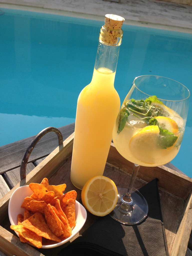 Limoncello tonic is a great variety on the popular Gin and Tonic. Nice, tasty, delicious and refreshing as aperitif!