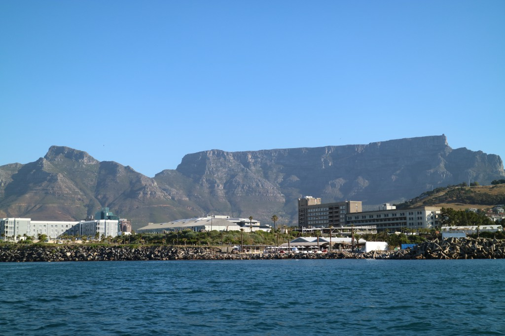 Cape Town seen from the Atlantic Ocean, sailing, South Africa, whales