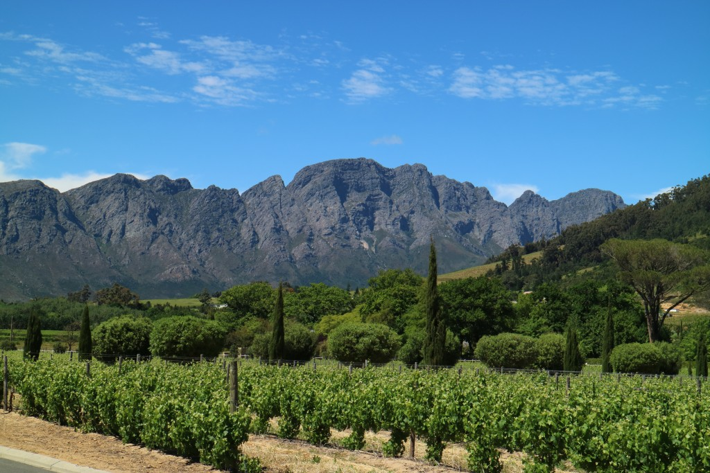 20 reasons why I love South Africa, travel, Cape Town, Route 62, Durban, Greyton, Franschhoek, South Africa
