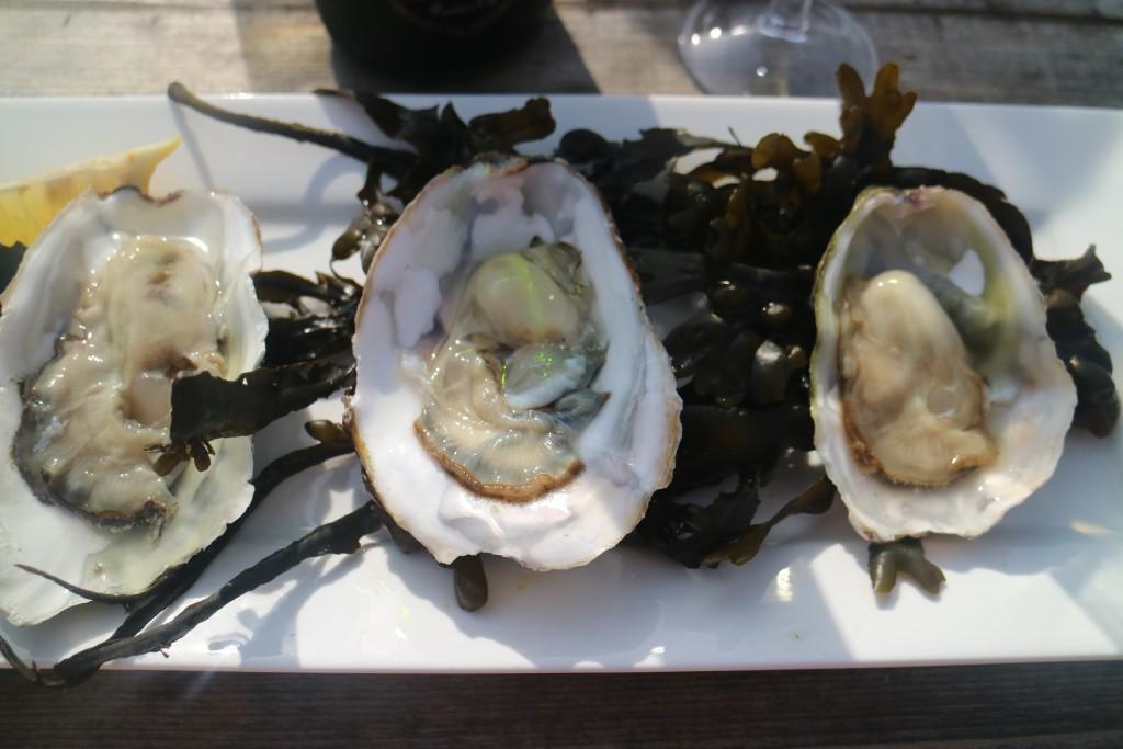 IMG_8825De Oesterij, Yerseke, Zeeland, oesters, mosselen, bubbels, champagne, wijn, lunch, diner, oosterschelde, mosselfeesten