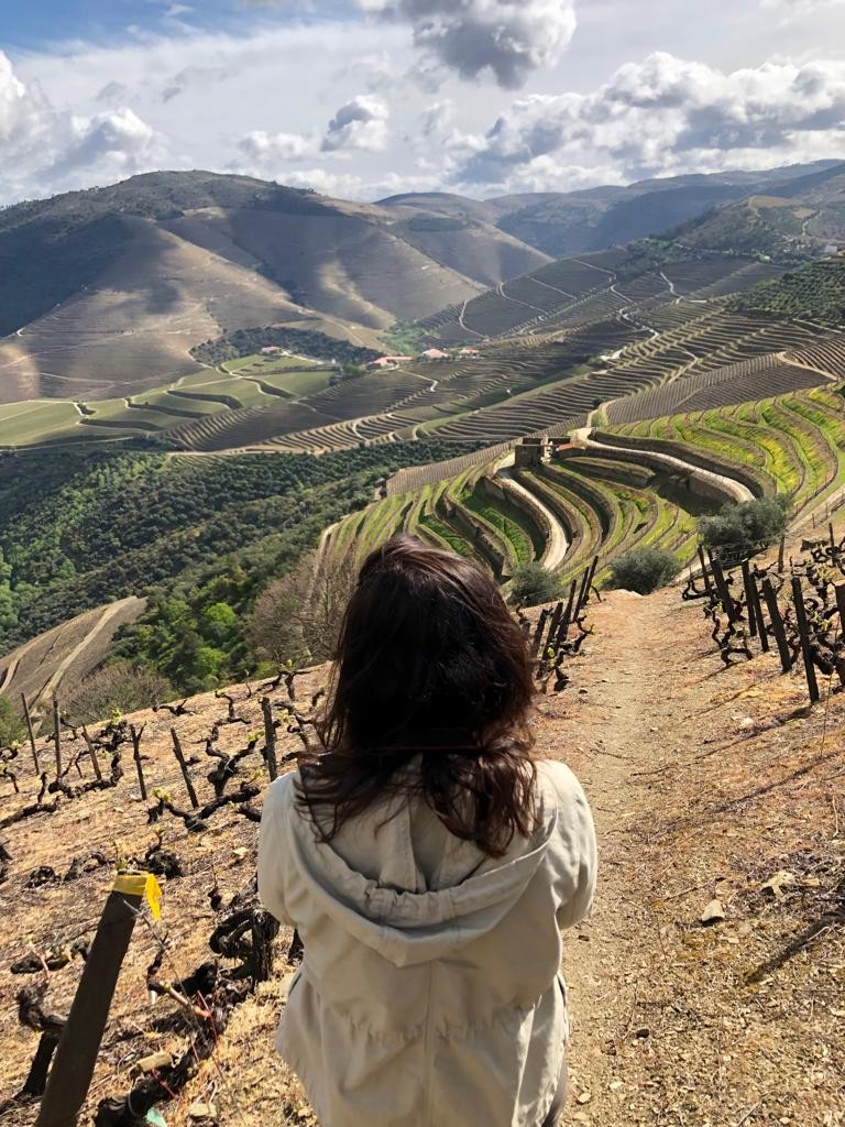 Douro Vallei, Portugal, Quinta do Crasto, Quinta das Calvalhas, Quinta do Vallado, Quinta da Pacheco, Horta Osorio, wijnblog, wijnlogger, wijnschrijven, wijn proeven, Douro rivier, wijnreis, reis & verblijf, doen, doe & beleef